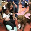 CBSS' Jennifer Willis helps a student interact with a dog